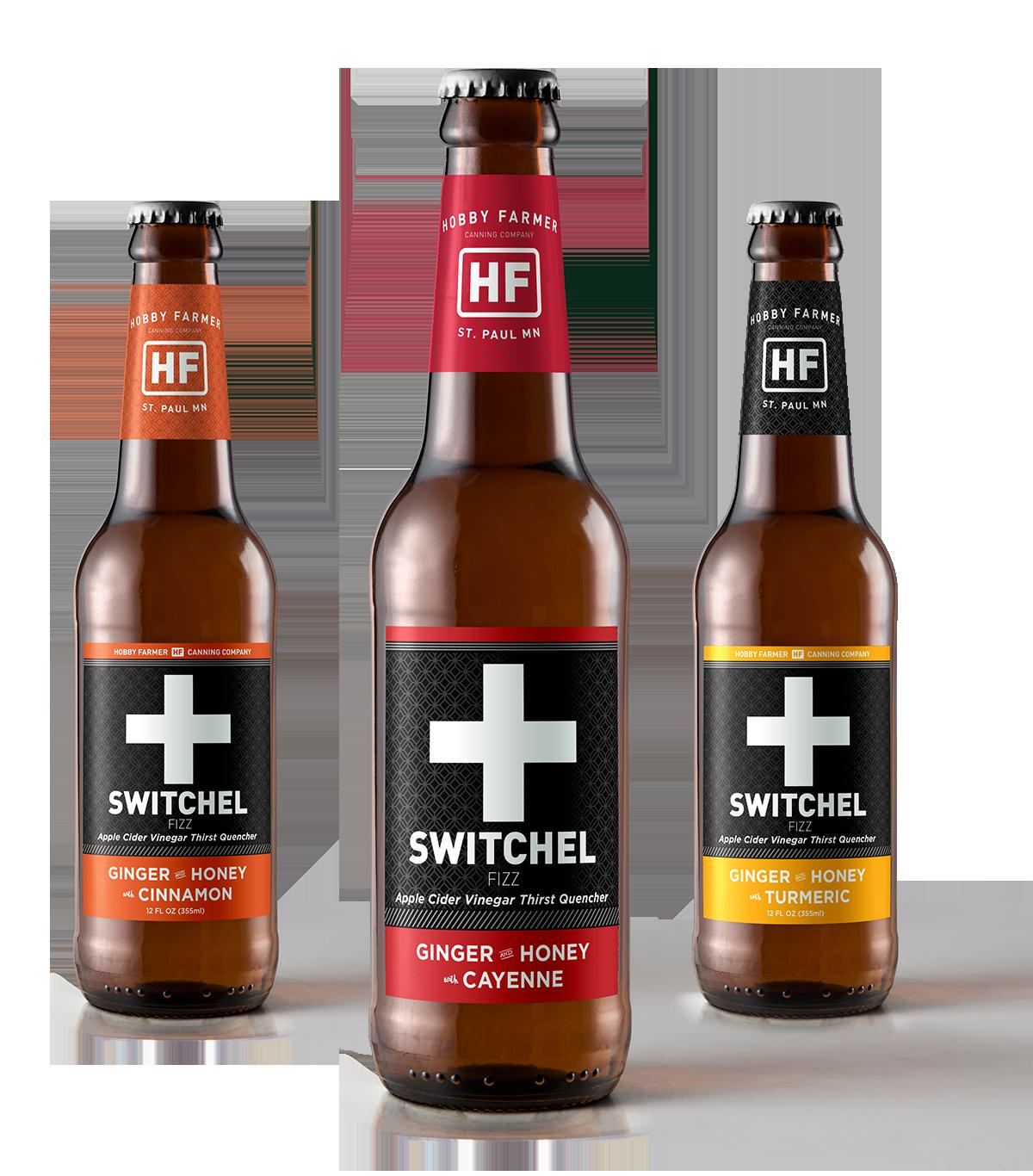 Switchel Beer